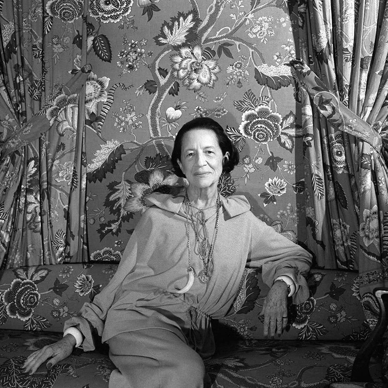 Диана Вриланд (1978)